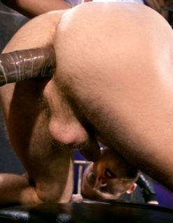 Fotos de macho da picona pelado