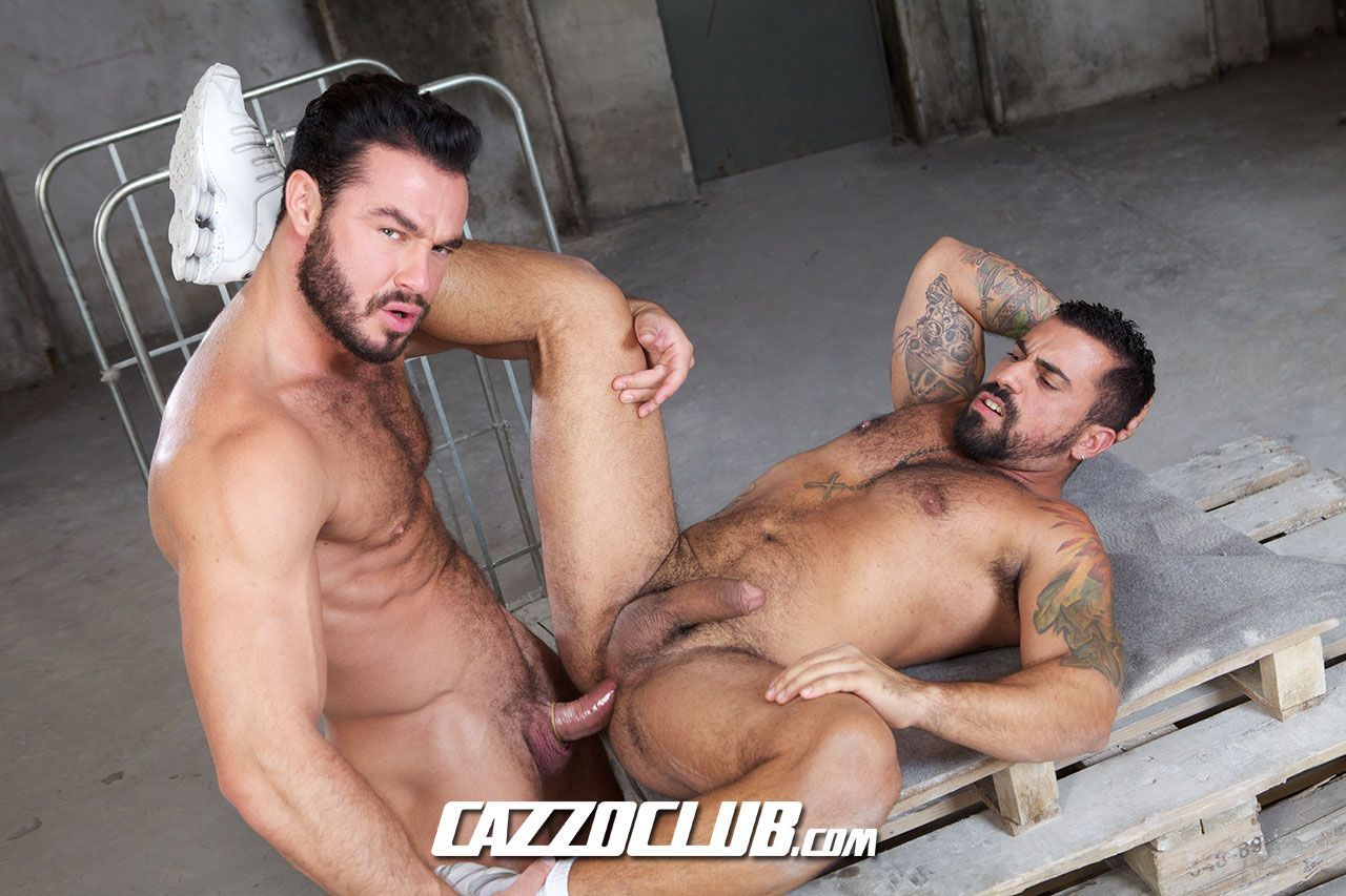 orgia gay peludos