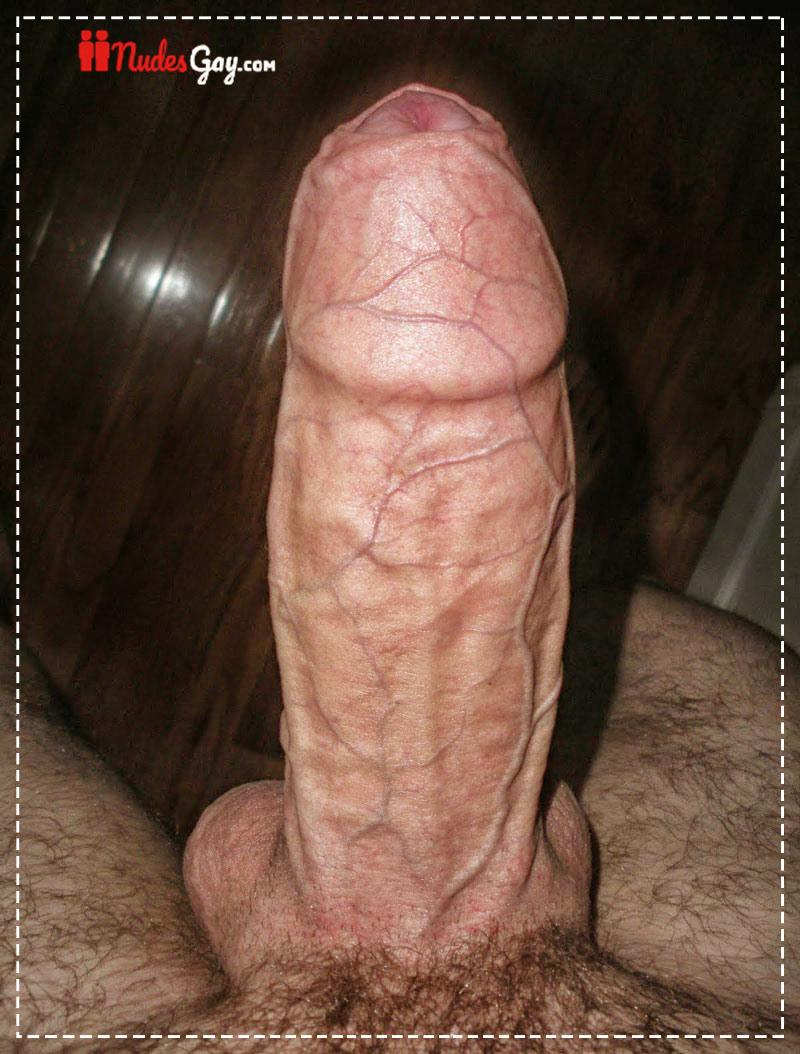Fotos Rola grande kinguys soloboys xvideos gay