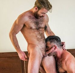 Foda gay entre machos peludos